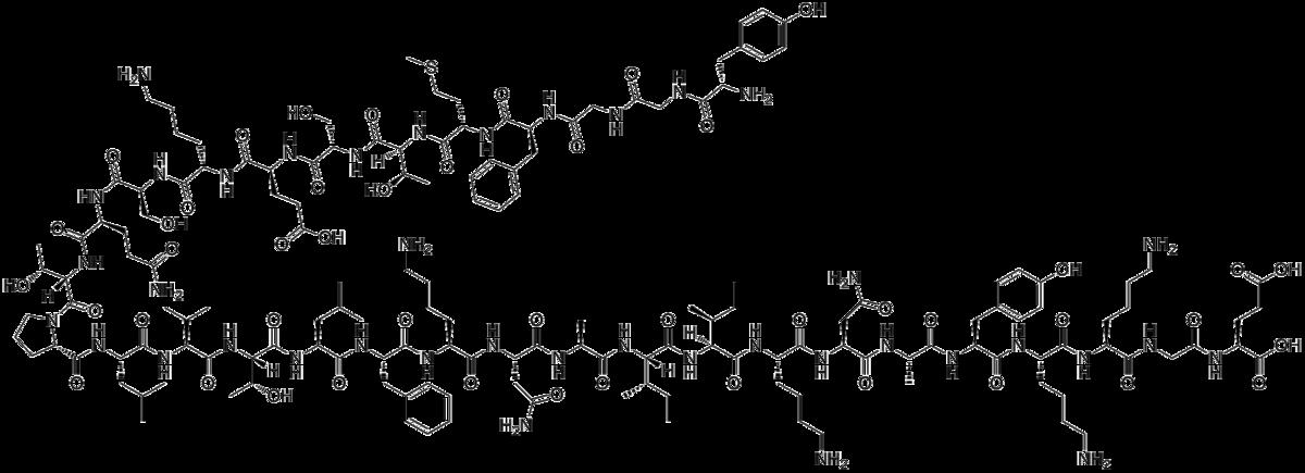 Бета-эндорфин
