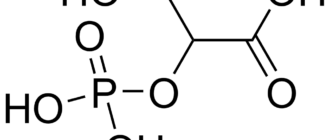 2-Фосфоглицерат