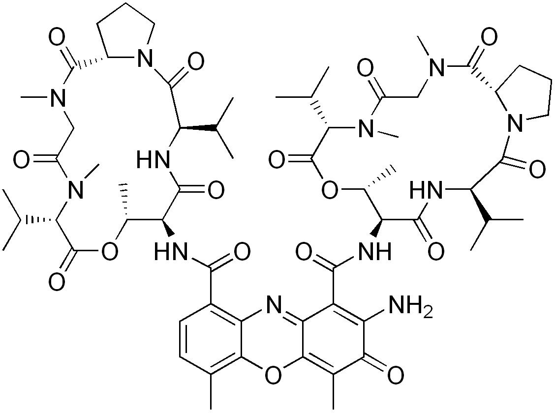 Дактиномицин