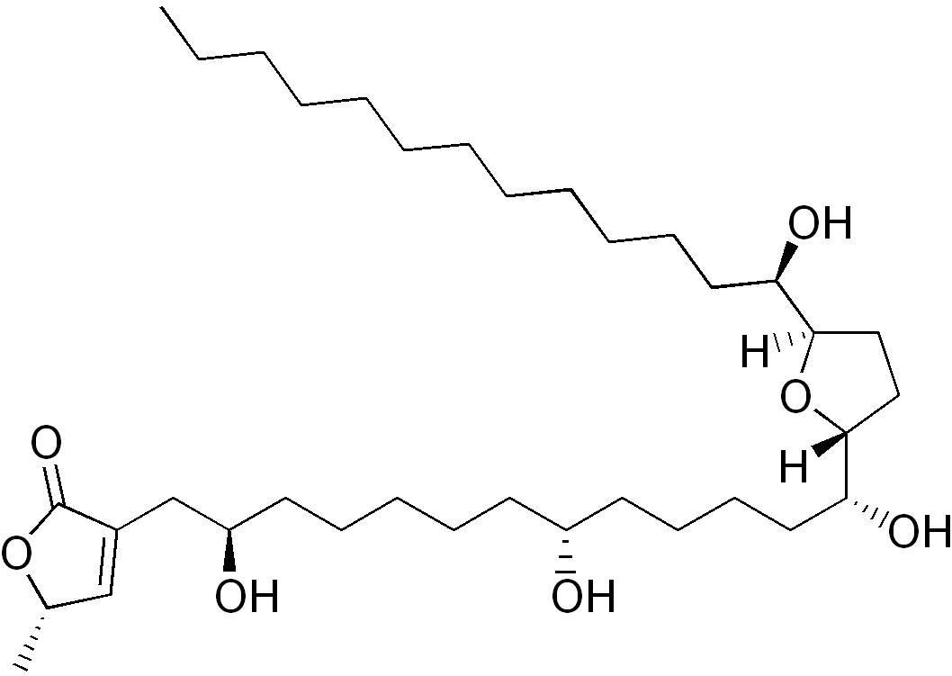 Ацетогенины