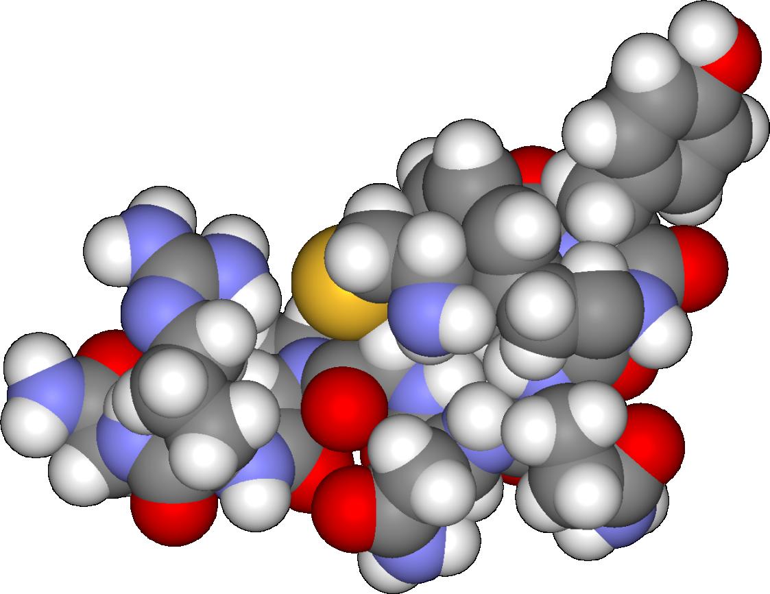 Антидиуретический гормон
