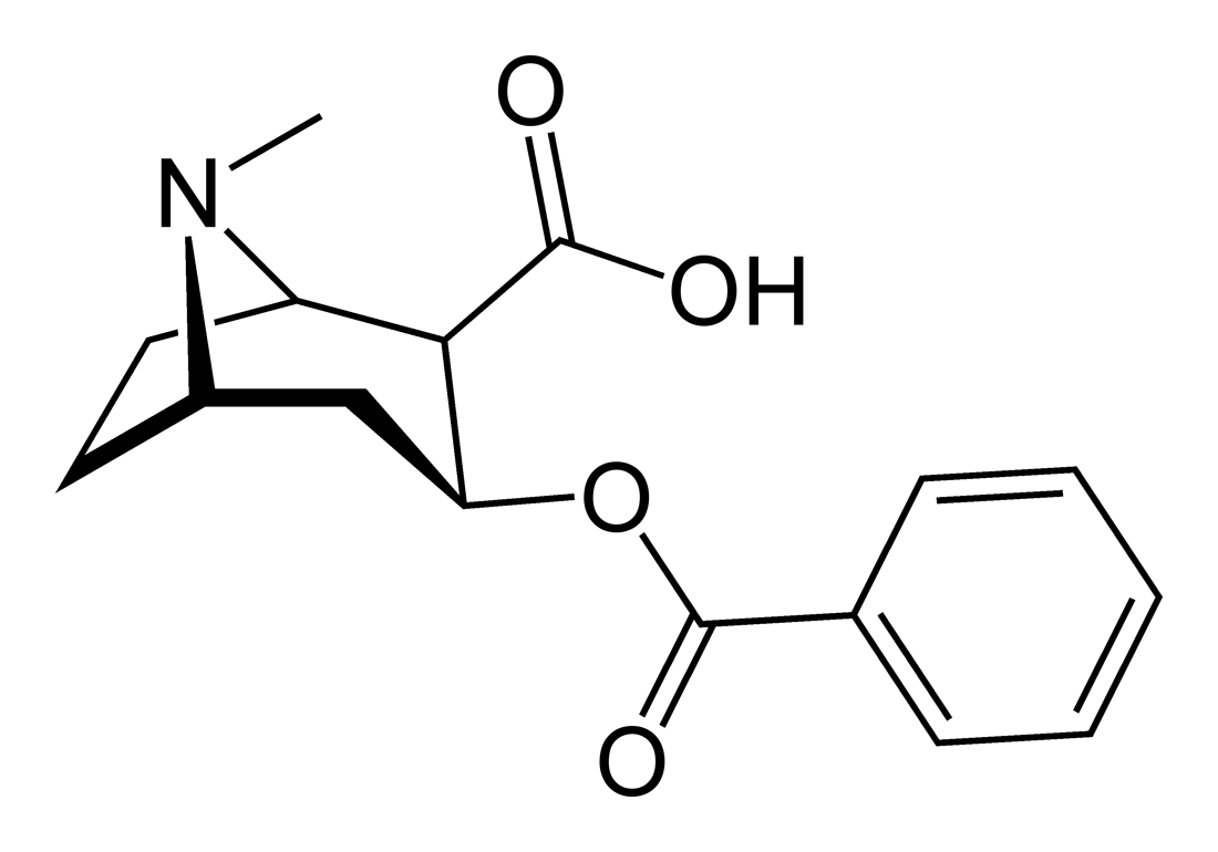 Бензоилэкгонин