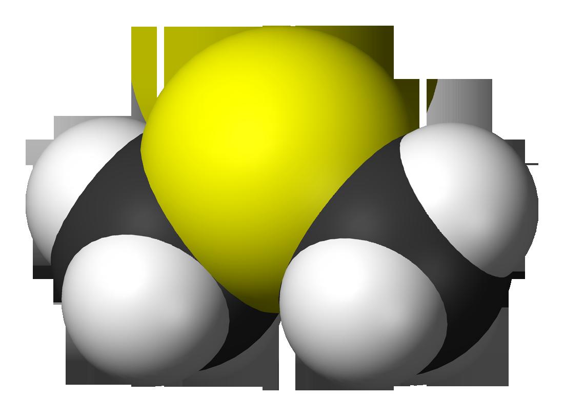 Диметилсульфид