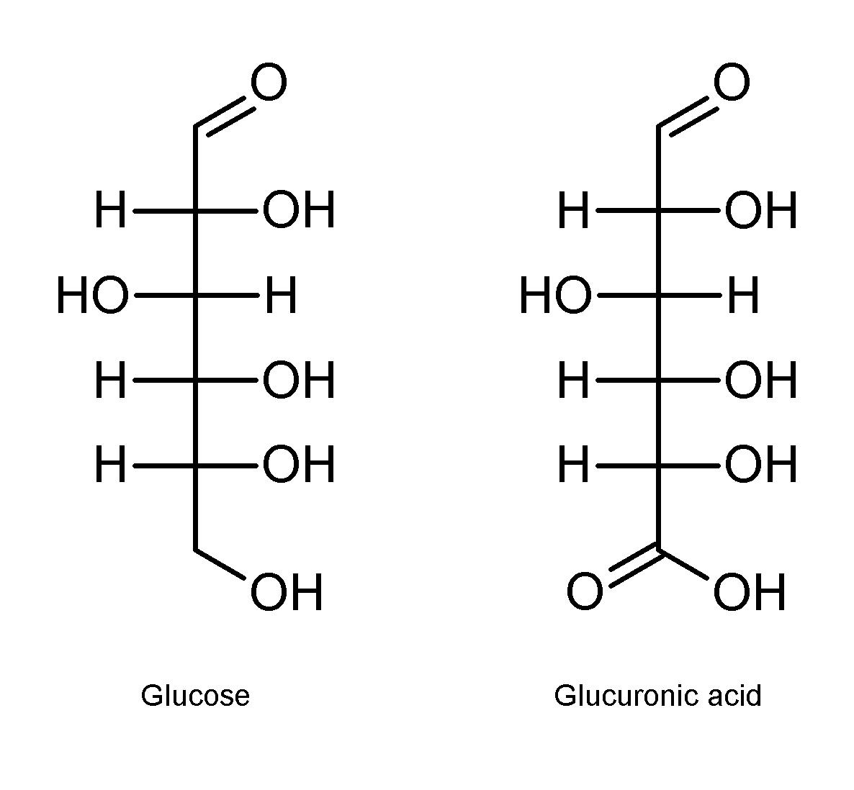 Уроновые кислоты