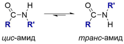 Cis-trans-amides.png