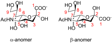 Neuraminic acid anomeric configuration