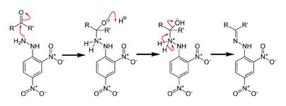 Механизм реакции 2,4-динитрофенилгидразина с карбонильной группой