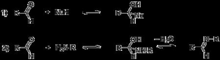 Общая схема нуклеофильного присоединения к альдегидам