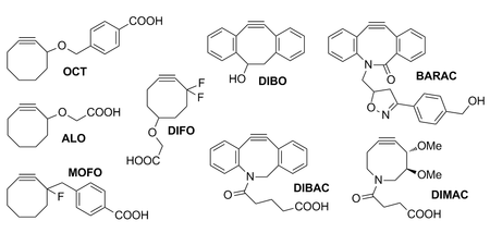 Strained cyclooctynes developed for copper-free click chemistry