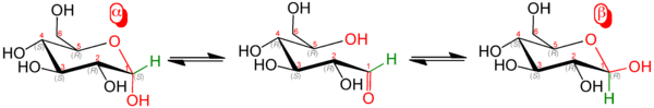Равновесие между аномерами D-глюкозы
